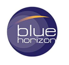 BLUE HORIZON SERVICES & OIL FIELD MAINTENANCE L L C - UAE Companies
